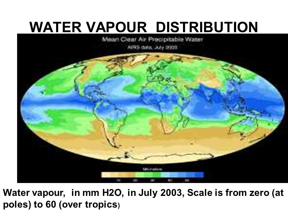 WATER VAPOUR DISTRIBUTION Water vapour, in mm H2O, in July 2003, Scale is from zero (at poles) to 60 (over tropics )