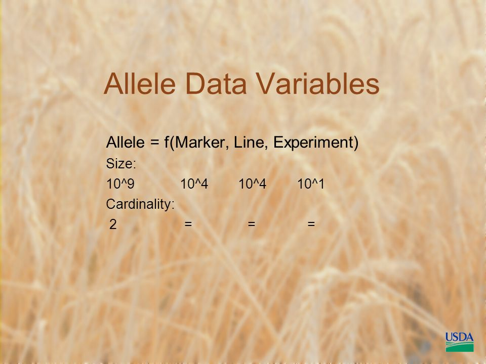 Allele Data Variables Allele = f(Marker, Line, Experiment) Size: 10^9 10^4 10^4 10^1 Cardinality: 2 = = =
