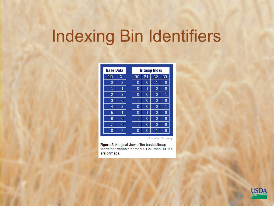 Indexing Bin Identifiers