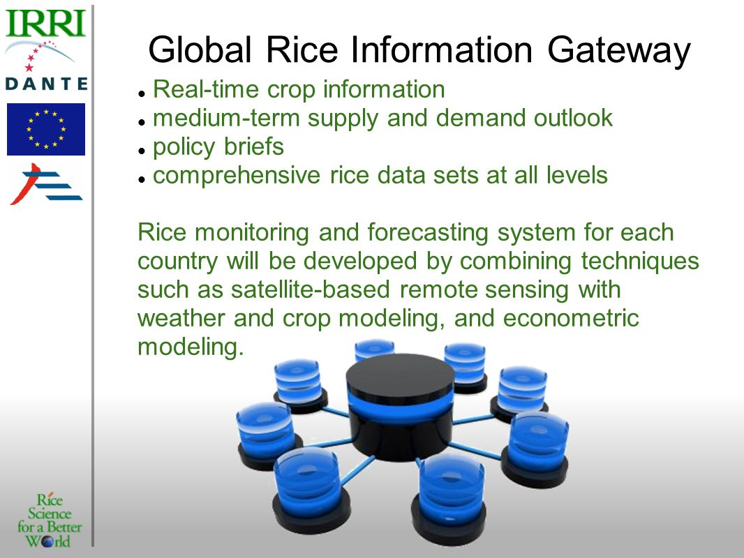 Global Rice Information Gateway Real-time crop information medium-term supply and demand outlook policy briefs comprehensive rice data sets at all lev
