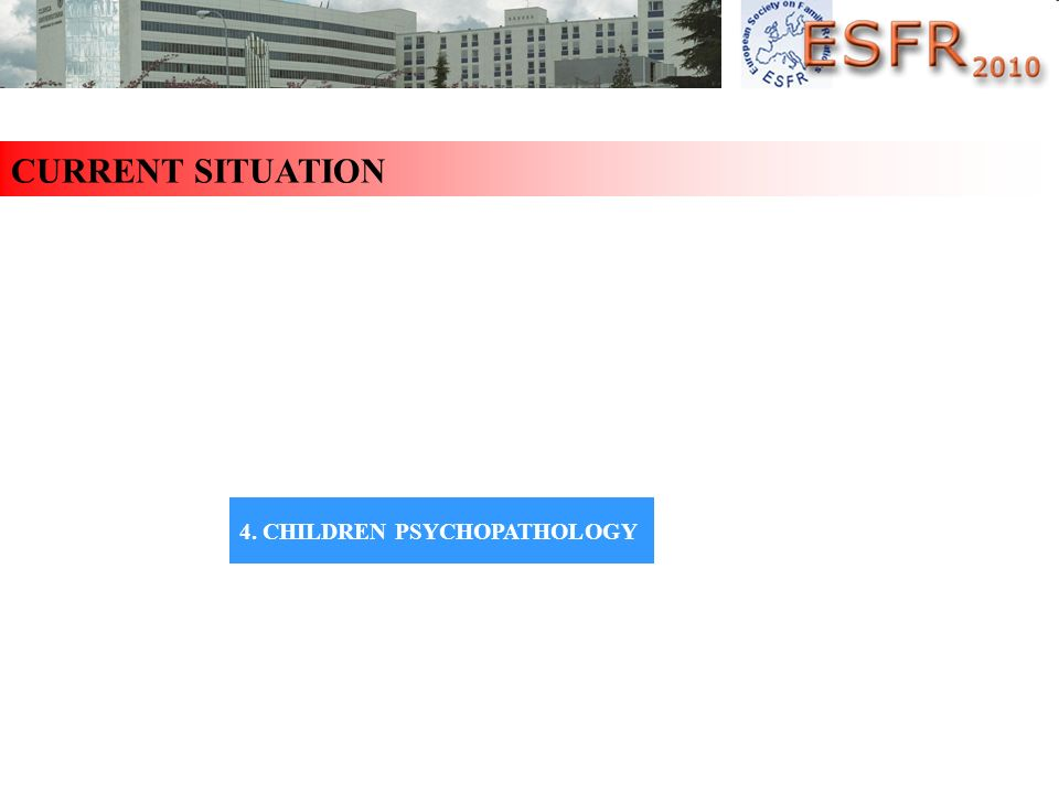CURRENT SITUATION 1. MARITAL FUNCTIONING 2. FAMILY FUNCTIONING 3. ADULT PSYCHOPATHOLOGY 4. CHILDREN PSYCHOPATHOLOGY