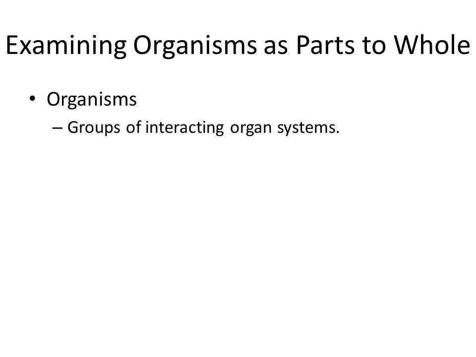 Examining Organisms as Parts to Whole Organisms – Groups of interacting organ systems.