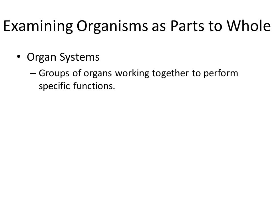 Examining Organisms as Parts to Whole Organ Systems – Groups of organs working together to perform specific functions.