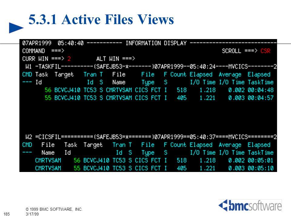 185 © 1999 BMC SOFTWARE, INC. 3/17/99 5.3.1 Active Files Views
