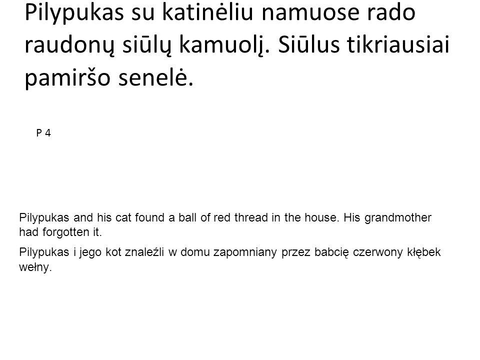 Pilypukas su katinėliu namuose rado raudonų siūlų kamuolį. Siūlus tikriausiai pamiršo senelė. Pilypukas and his cat found a ball of red thread in the