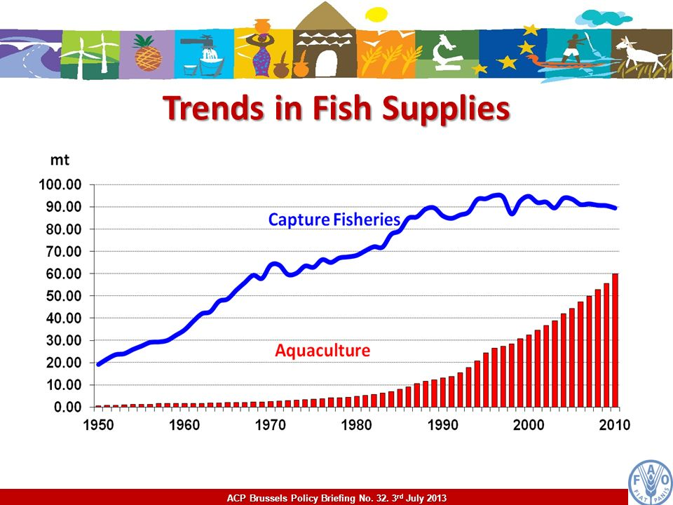 ACP Brussels Policy Briefing No. 32. 3 rd July 2013 Trends in Fish Supplies