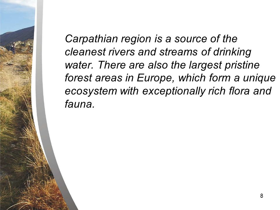 8 Carpathian region is a source of the cleanest rivers and streams of drinking water.