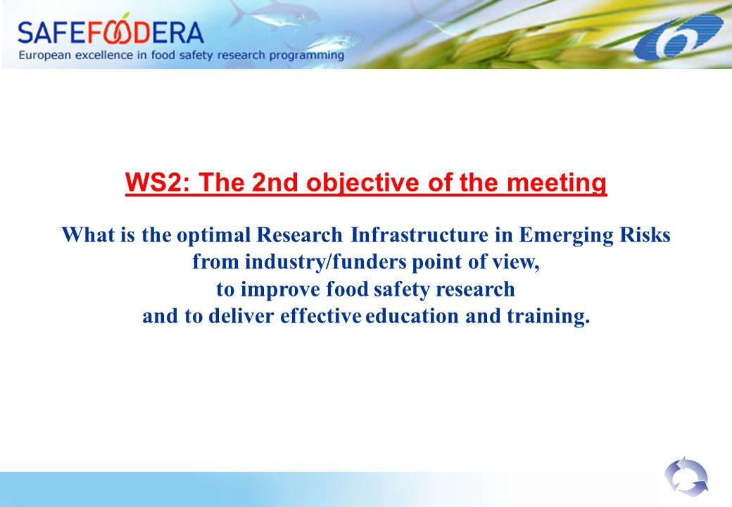 WS2: The 2nd objective of the meeting What is the optimal Research Infrastructure in Emerging Risks from industry/funders point of view, to improve fo