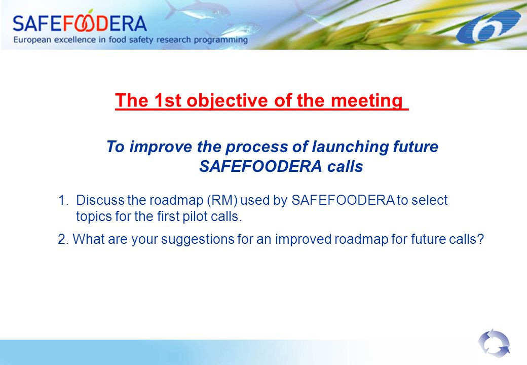 To improve the process of launching future SAFEFOODERA calls 1.Discuss the roadmap (RM) used by SAFEFOODERA to select topics for the first pilot calls