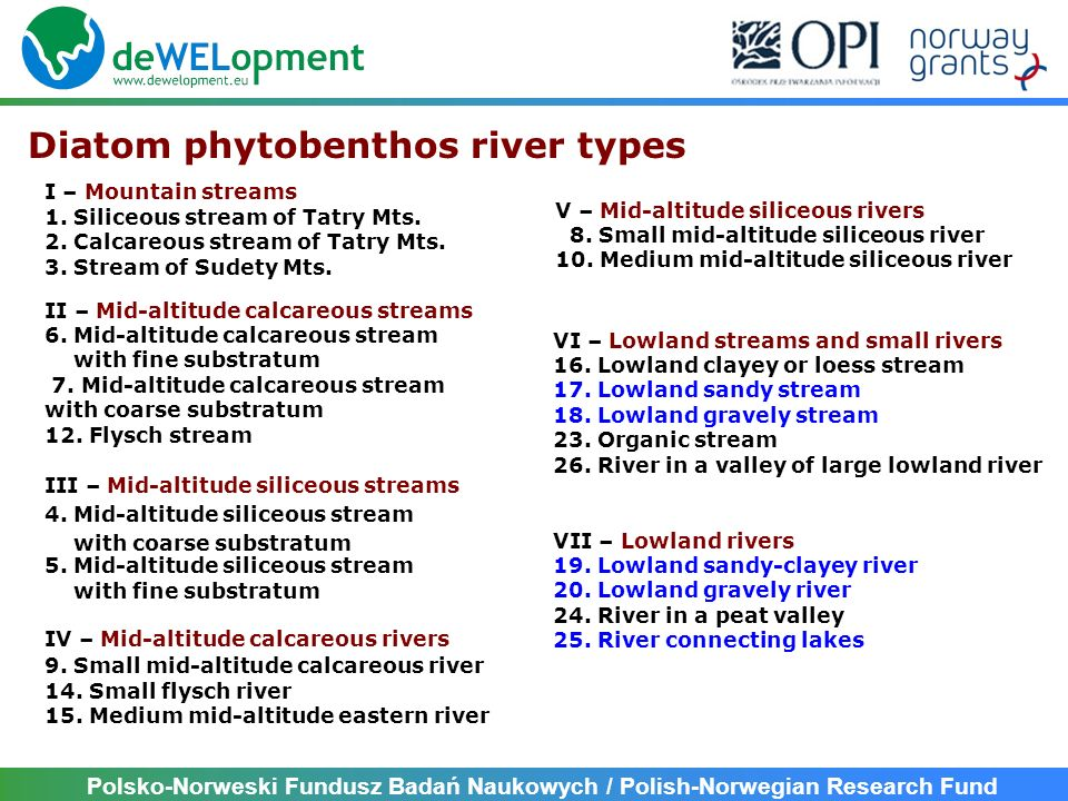 Polsko-Norweski Fundusz Badań Naukowych / Polish-Norwegian Research Fund Diatom phytobenthos river types I – Mountain streams 1. Siliceous stream of T