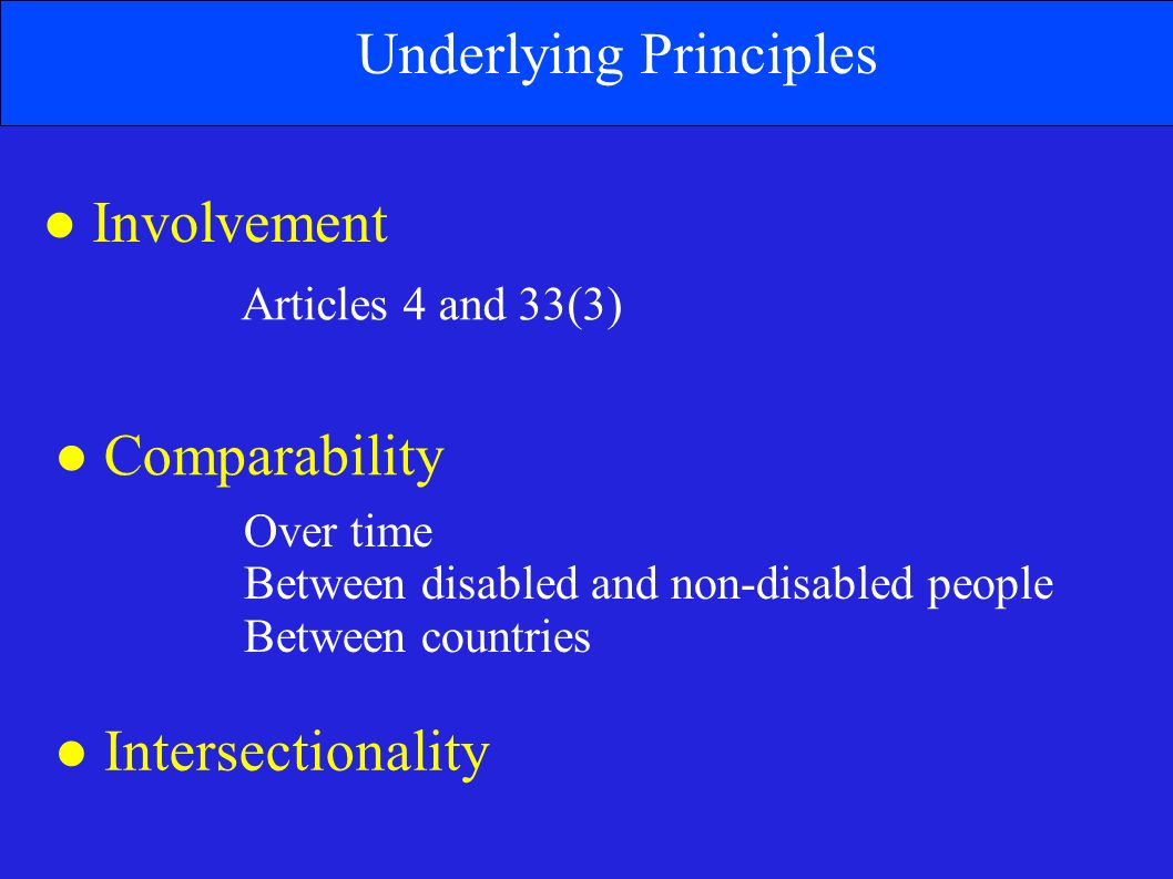 Underlying Principles Involvement Comparability Intersectionality Articles 4 and 33(3) Over time Between disabled and non-disabled people Between countries