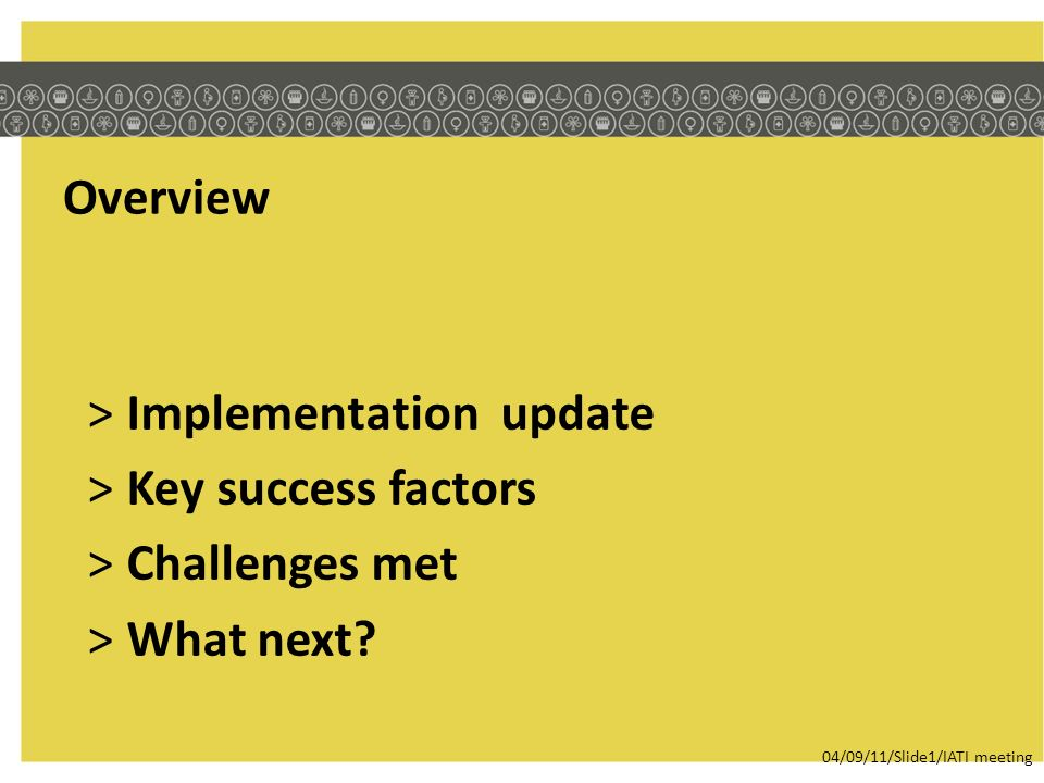 Overview >Implementation update >Key success factors >Challenges met >What next.