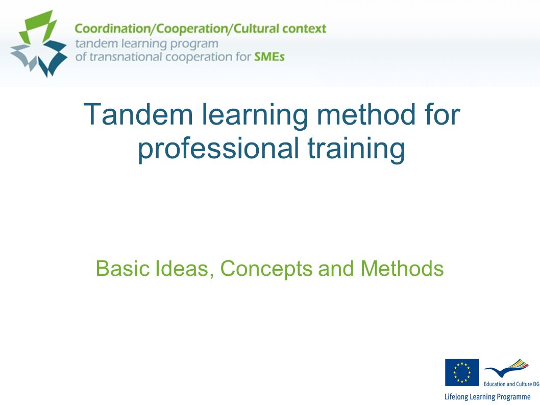 Tandem learning method for professional training Basic Ideas, Concepts and Methods