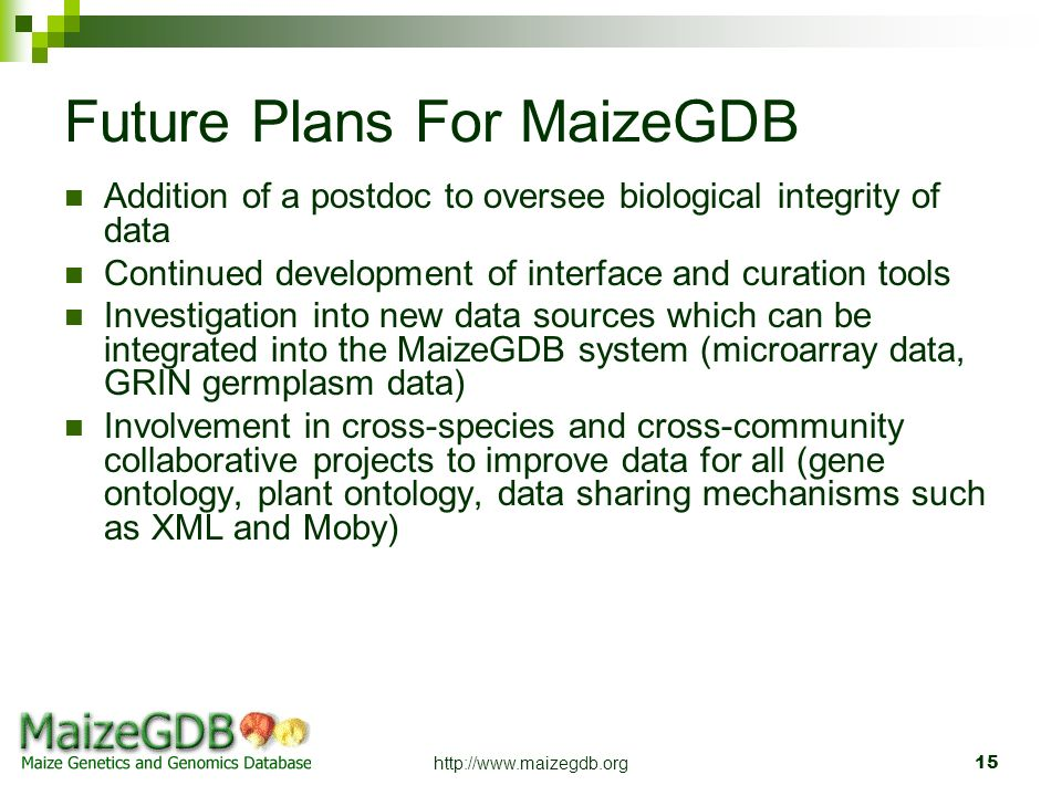 http://www.maizegdb.org15 Future Plans For MaizeGDB Addition of a postdoc to oversee biological integrity of data Continued development of interface a