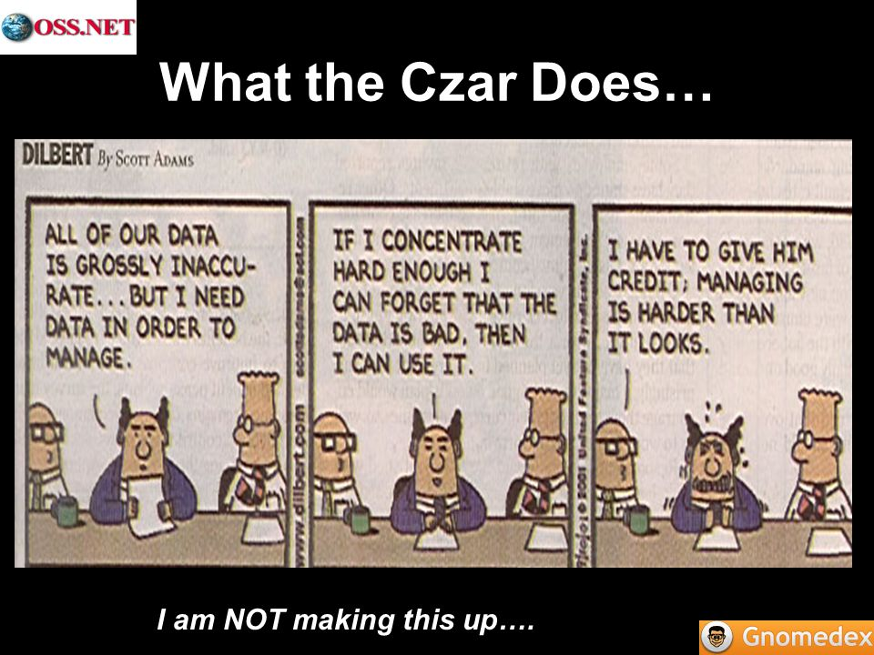 What the Czar Does… I am NOT making this up….