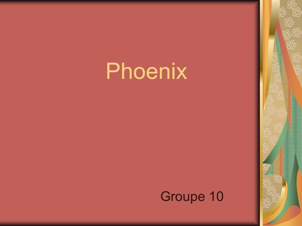 Phoenix Groupe 10