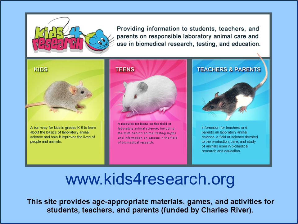 www.kids4research.org This site provides age-appropriate materials, games, and activities for students, teachers, and parents (funded by Charles River