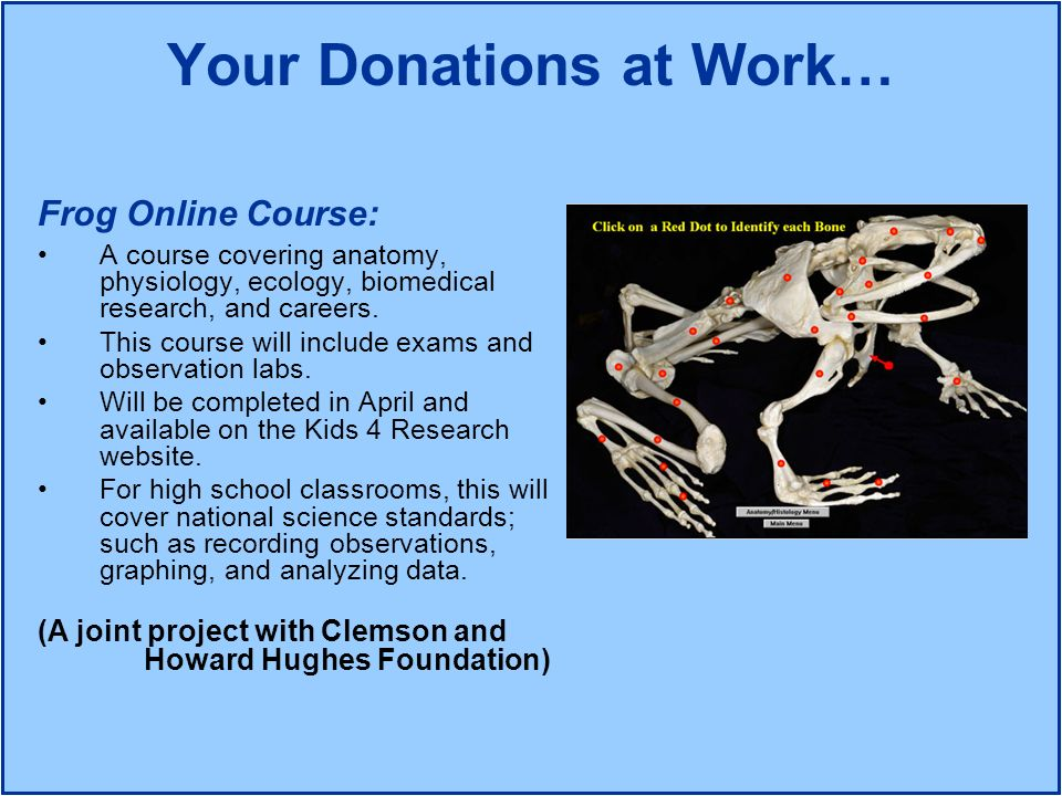 Your Donations at Work… Frog Online Course: A course covering anatomy, physiology, ecology, biomedical research, and careers. This course will include
