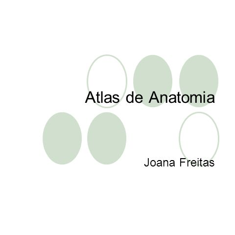 Atlas de Anatomia Joana Freitas