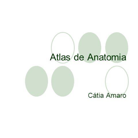 Atlas de Anatomia Cátia Amaro