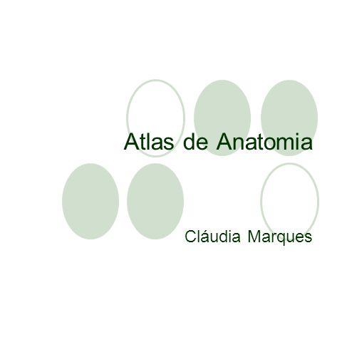 Atlas de Anatomia Cláudia Marques