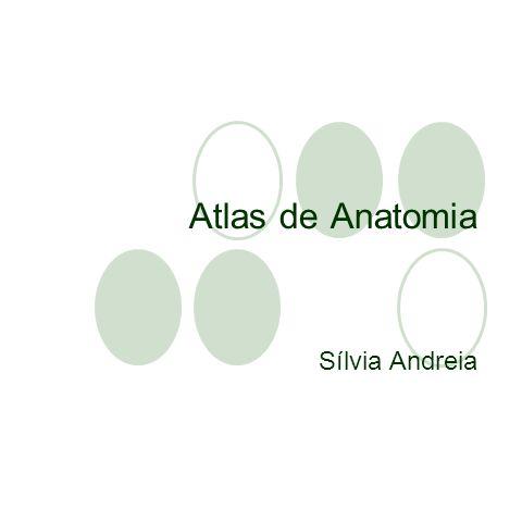 Atlas de Anatomia Sílvia Andreia