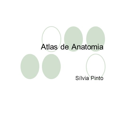 Atlas de Anatomia Sílvia Pinto