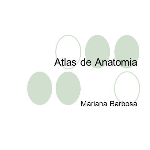 Atlas de Anatomia Mariana Barbosa