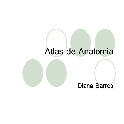 Atlas de Anatomia Diana Barros