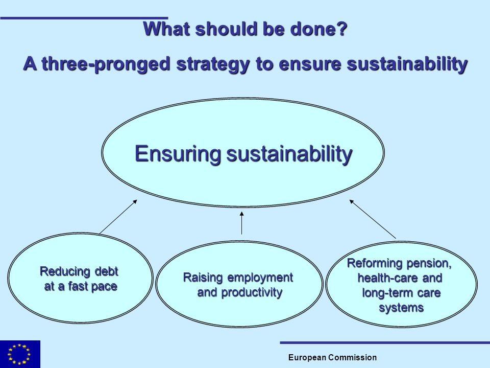 What should be done? A three-pronged strategy to ensure sustainability European Commission Ensuring sustainability Reducing debt at a fast pace Raisin