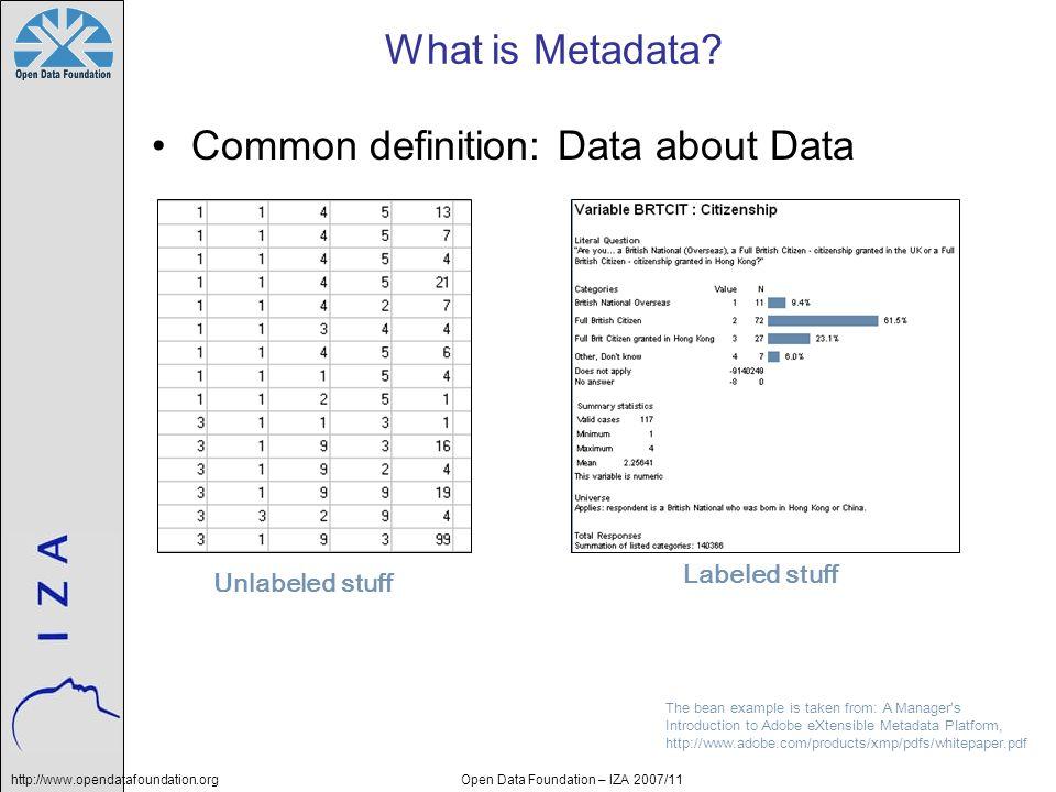 http://www.opendatafoundation.orgOpen Data Foundation – IZA 2007/11 Managing data and metadata is challenging.