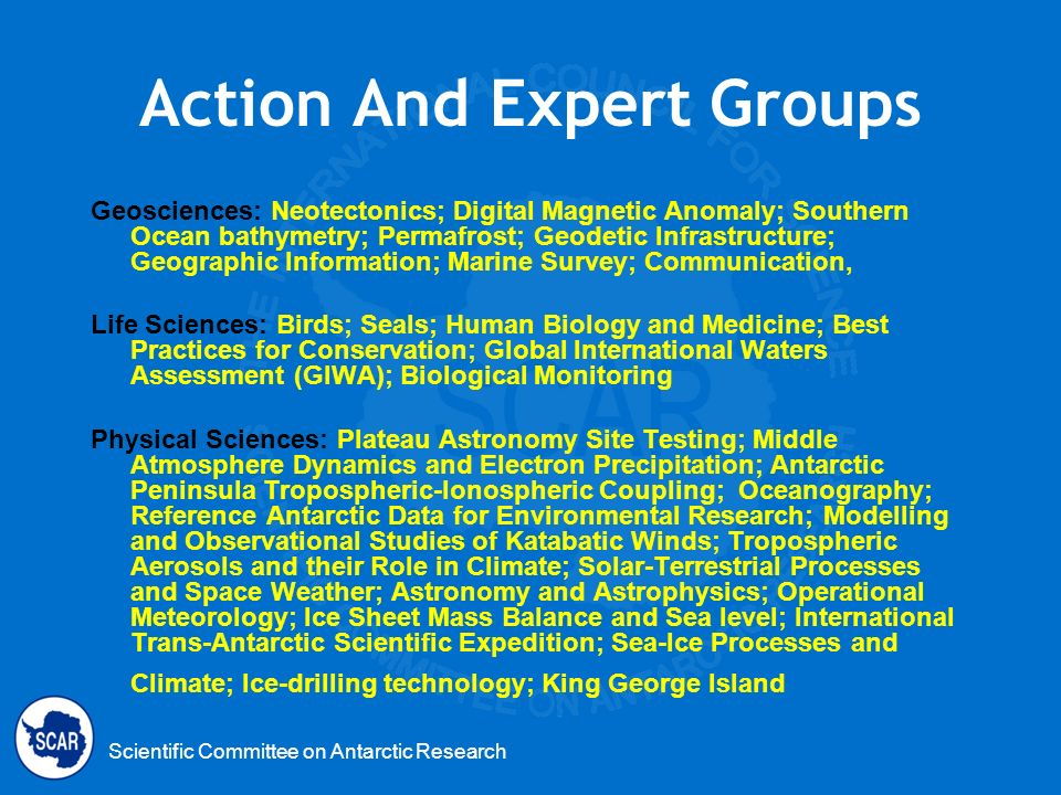 Scientific Committee on Antarctic Research Action And Expert Groups Geosciences: Neotectonics; Digital Magnetic Anomaly; Southern Ocean bathymetry; Pe