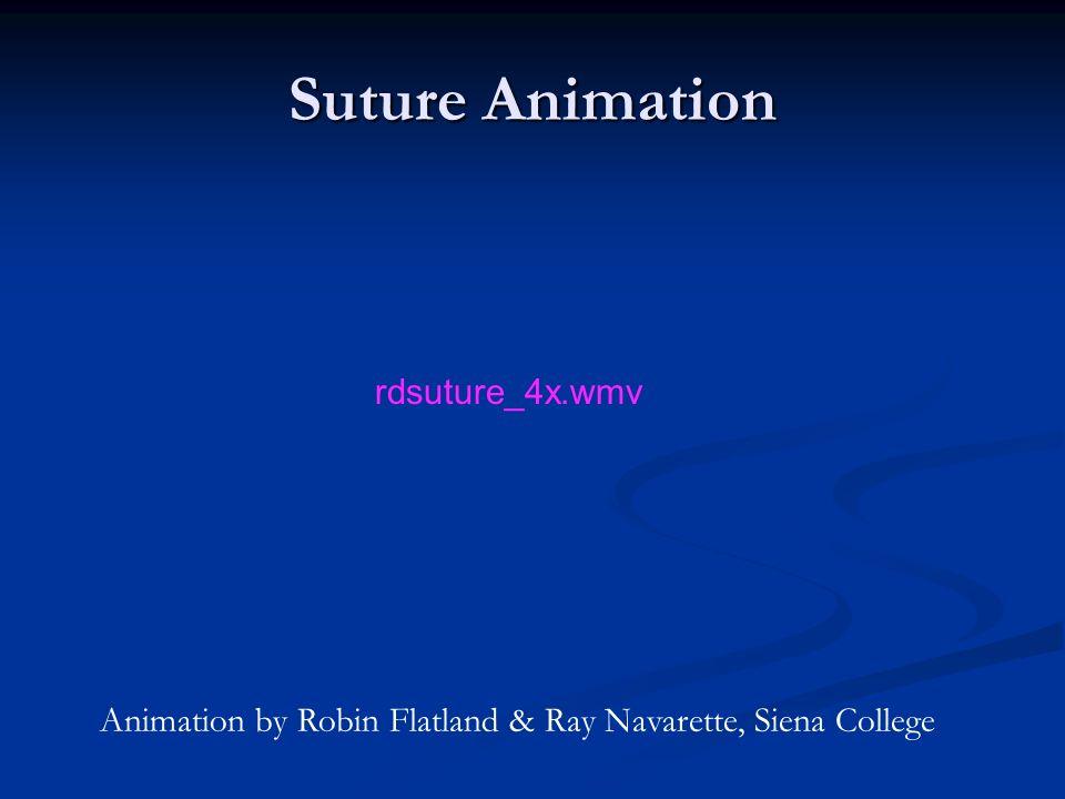Suture Animation Animation by Robin Flatland & Ray Navarette, Siena College rdsuture_4x.wmv