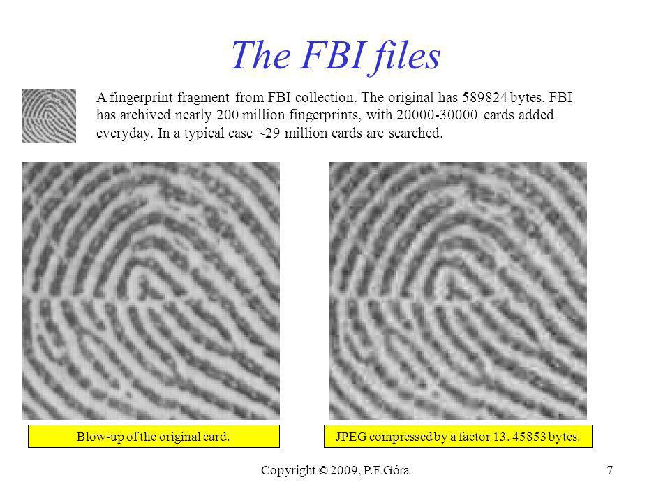 Copyright © 2009, P.F.Góra7 The FBI files A fingerprint fragment from FBI collection.