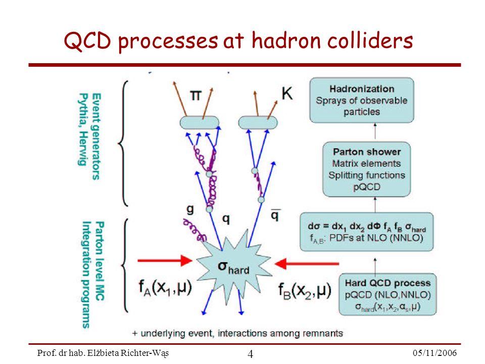 05/11/2006 5 Prof. dr hab. Elżbieta Richter-Wąs QCD processes at hadron colliders