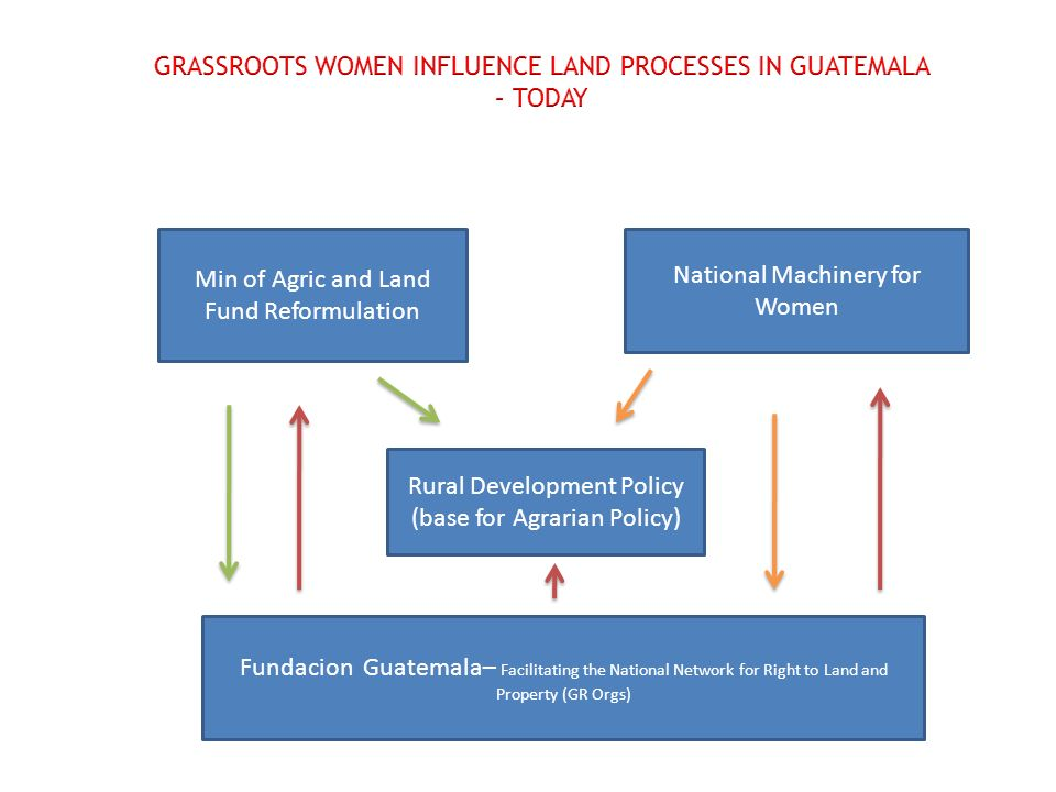 Min of Agric and Land Fund Reformulation Fundacion Guatemala– Facilitating the National Network for Right to Land and Property (GR Orgs) National Machinery for Women Rural Development Policy (base for Agrarian Policy)