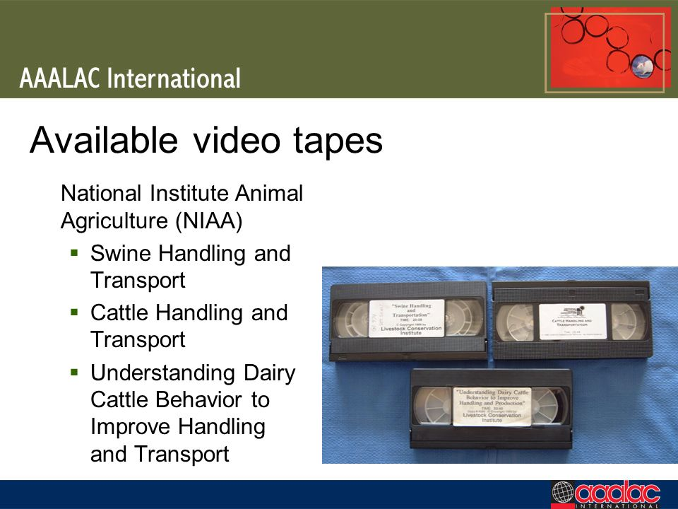 Available video tapes National Institute Animal Agriculture (NIAA) Swine Handling and Transport Cattle Handling and Transport Understanding Dairy Catt