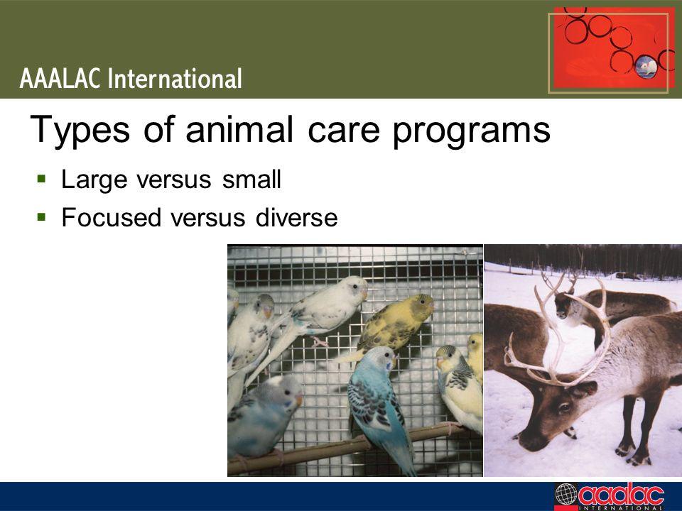 Types of animal care programs Large versus small Focused versus diverse