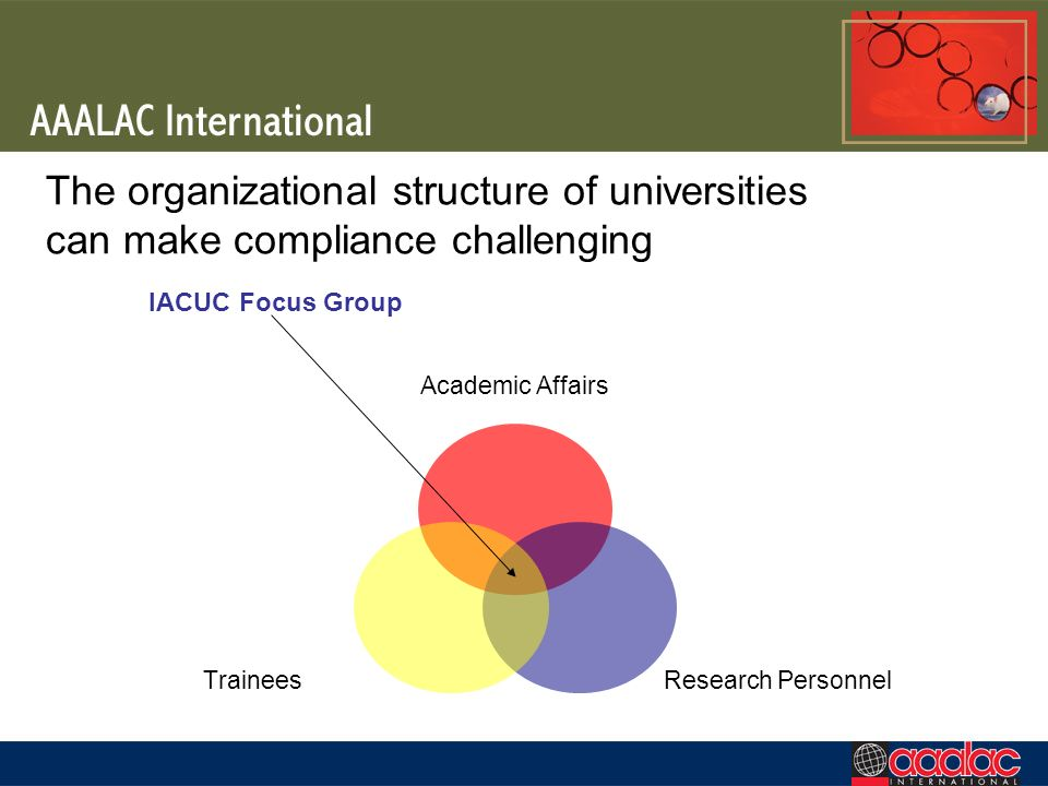 The organizational structure of universities can make compliance challenging Academic Affairs Research Personnel Trainees IACUC Focus Group
