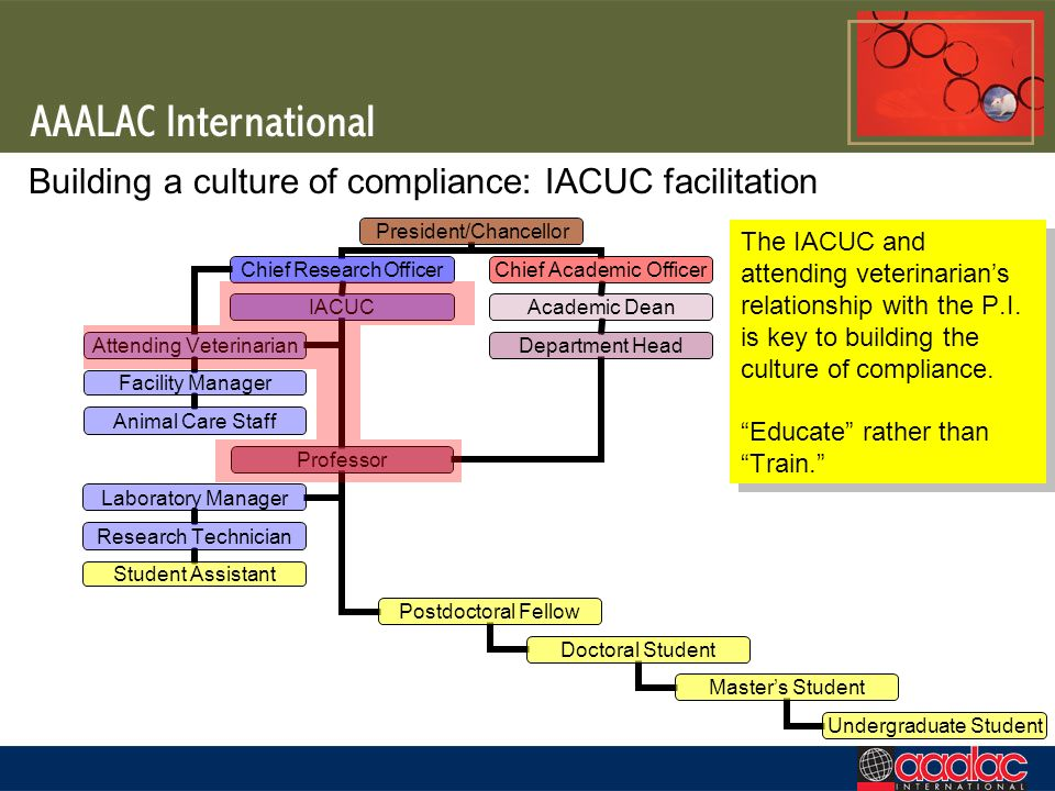 Building a culture of compliance: IACUC facilitation The IACUC and attending veterinarians relationship with the P.I. is key to building the culture o