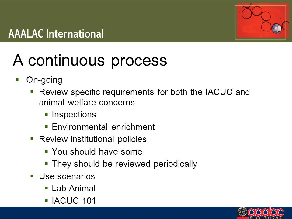 A continuous process On-going Review specific requirements for both the IACUC and animal welfare concerns Inspections Environmental enrichment Review