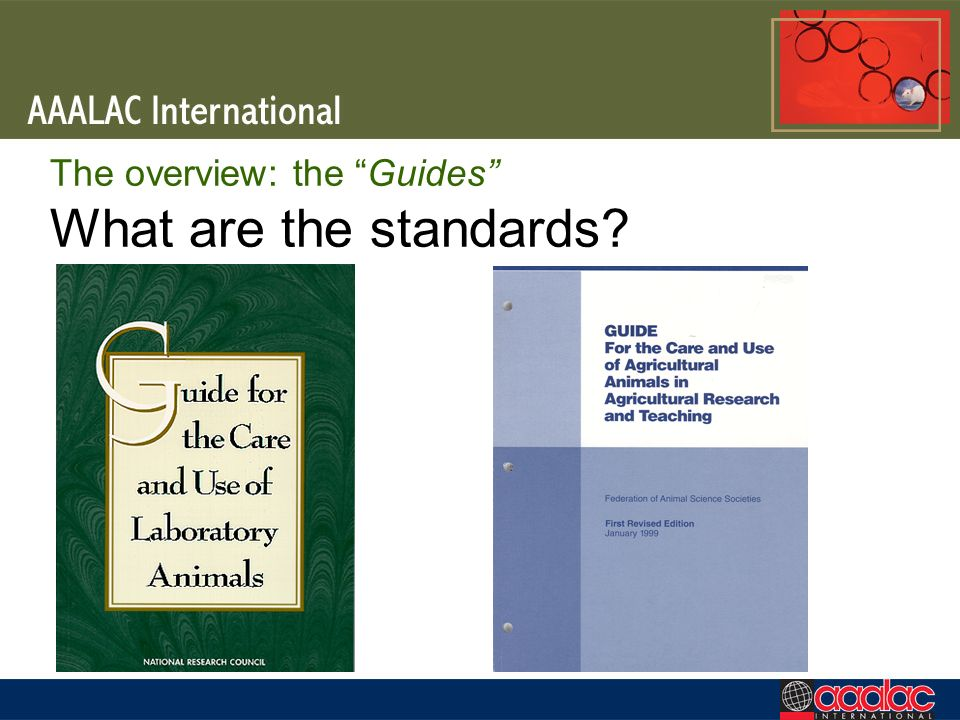 The overview: the Guides What are the standards?