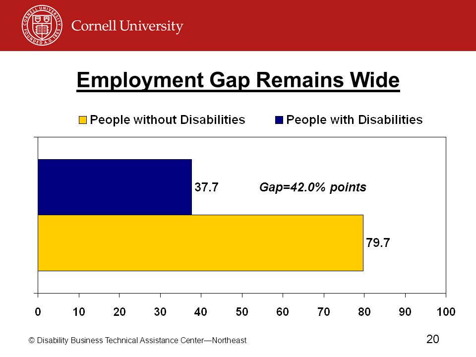 © Disability Business Technical Assistance CenterNortheast 20 Employment Gap Remains Wide Gap=42.0% points