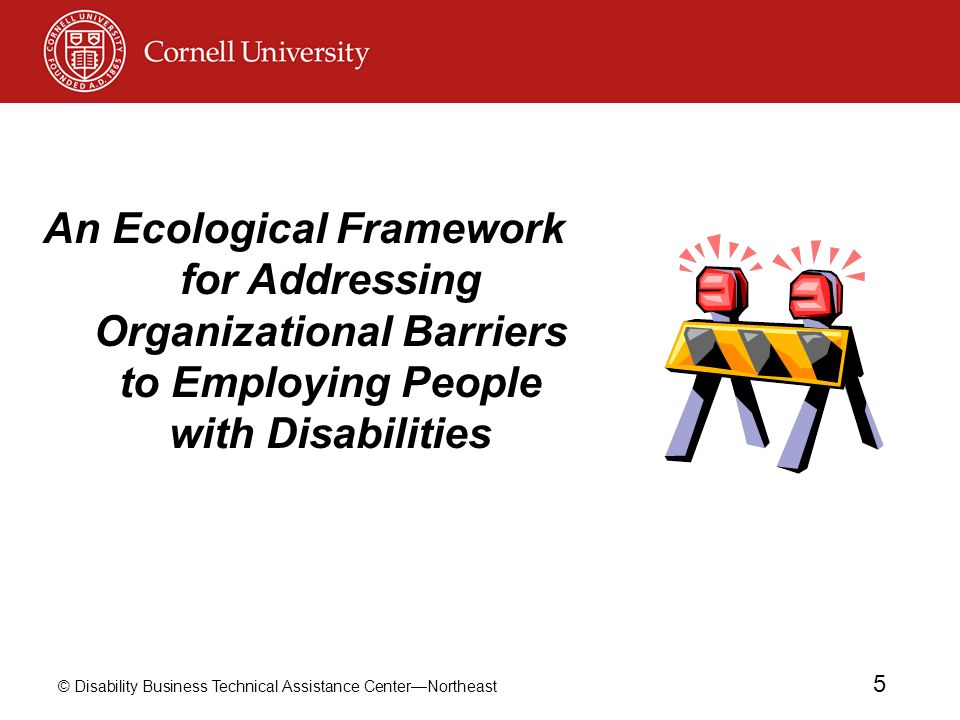 © Disability Business Technical Assistance CenterNortheast 5 An Ecological Framework for Addressing Organizational Barriers to Employing People with D