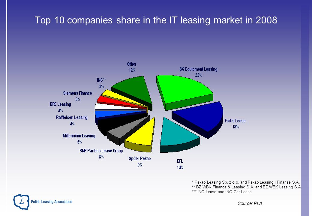 Top 10 companies share in the IT leasing market in 2008 * Pekao Leasing Sp.