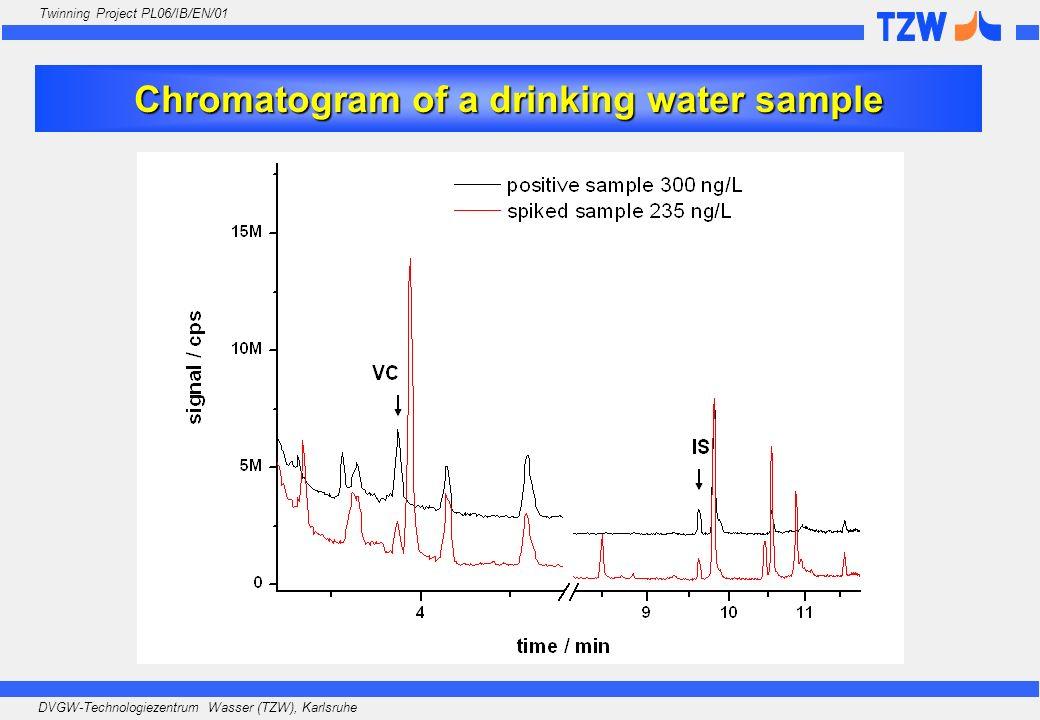 DVGW-Technologiezentrum Wasser (TZW), Karlsruhe Twinning Project PL06/IB/EN/01 Chromatogram of a drinking water sample