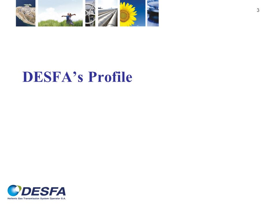 DESFAs Profile 3