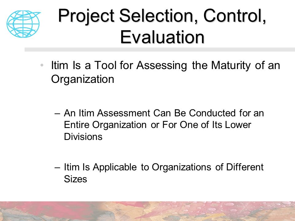 Project Selection, Control, Evaluation Itim Is a Tool for Assessing the Maturity of an Organization –An Itim Assessment Can Be Conducted for an Entire