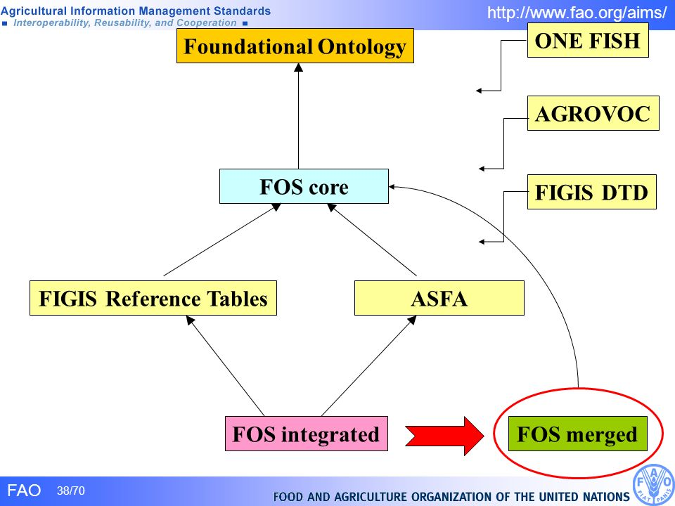 FAO 38/70 http://www.fao.org/aims/ Foundational Ontology FOS core FOS integratedFOS merged FIGIS Reference TablesASFA FIGIS DTD ONE FISH AGROVOC