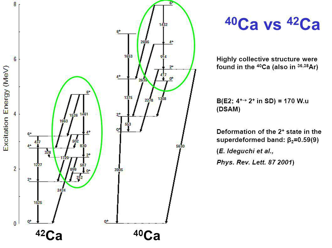42 Ca 40 Ca Highly collective structure were found in the 40 Ca (also in 36,38 Ar) B(E2; 4 + 2 + in SD) = 170 W.u (DSAM) Deformation of the 2 + state